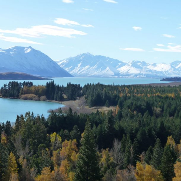 Lake-Tekapo-Regional-Park_South-Canterbury.