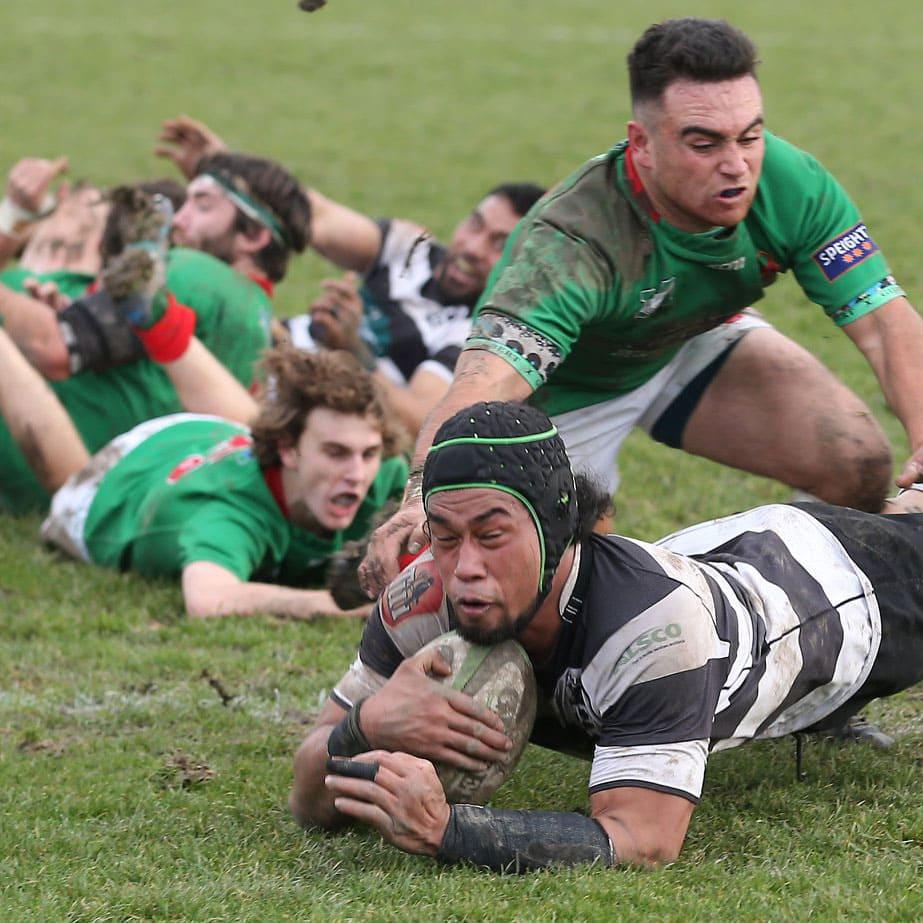 Stuff-The-Timaru-Herald_South-Canterbury
