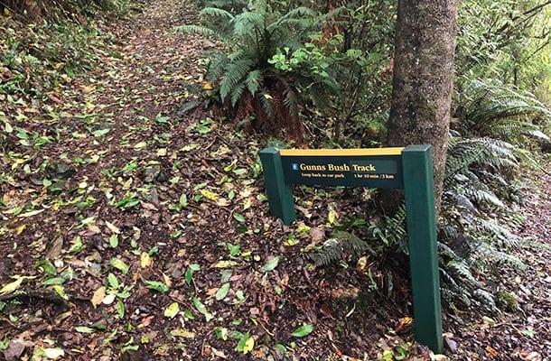 Waimate Guns Bush track-Waimate-South Canterbury-1col