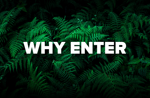 Why Enter
